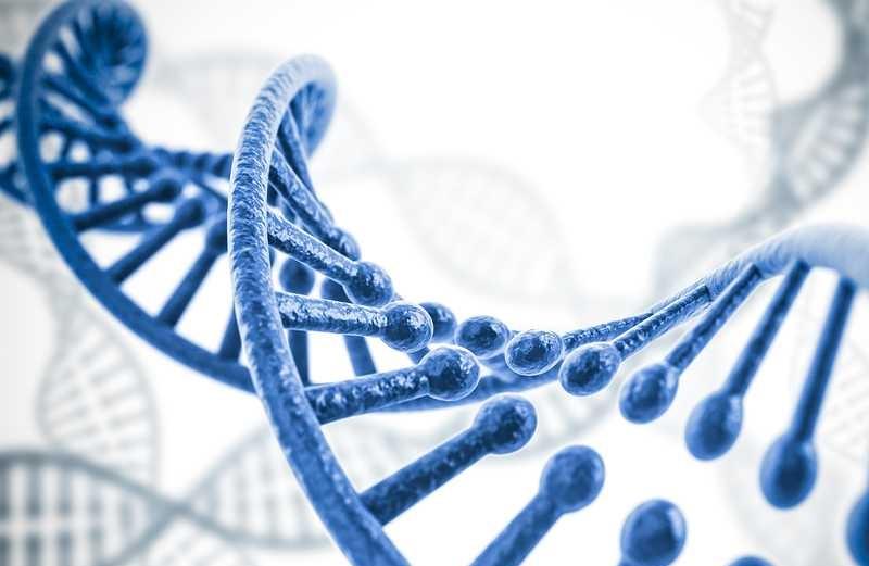 كيف تنتقل الامراض الوراثية؟